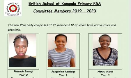 Primary PSA Committee